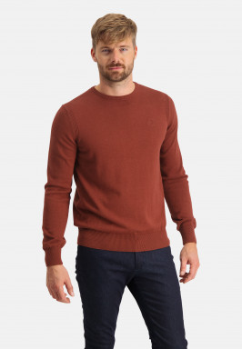 Pullover-with-a-logo-on-chest