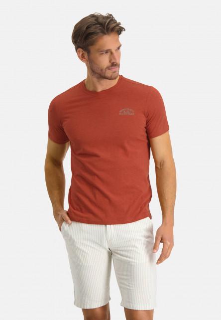 Cotton-T-shirt-with-an-artwork---brick/buff