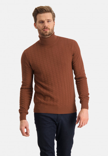 Pullover-with-turtle-neck-and-regular-fit